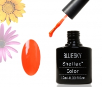 Shellac BLUESKY, № Neon22