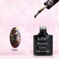 Shellac BLUESKY, № CS37