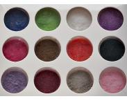 БАРХАТ цветной, 12 шт/набор, #S2