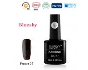 Shellac BLUESKY, № France 37