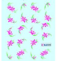 Наклейки цветные, № BLE026