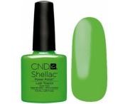 Shellac CND, № 90516