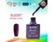 Shellac BLUESKY, № 80524